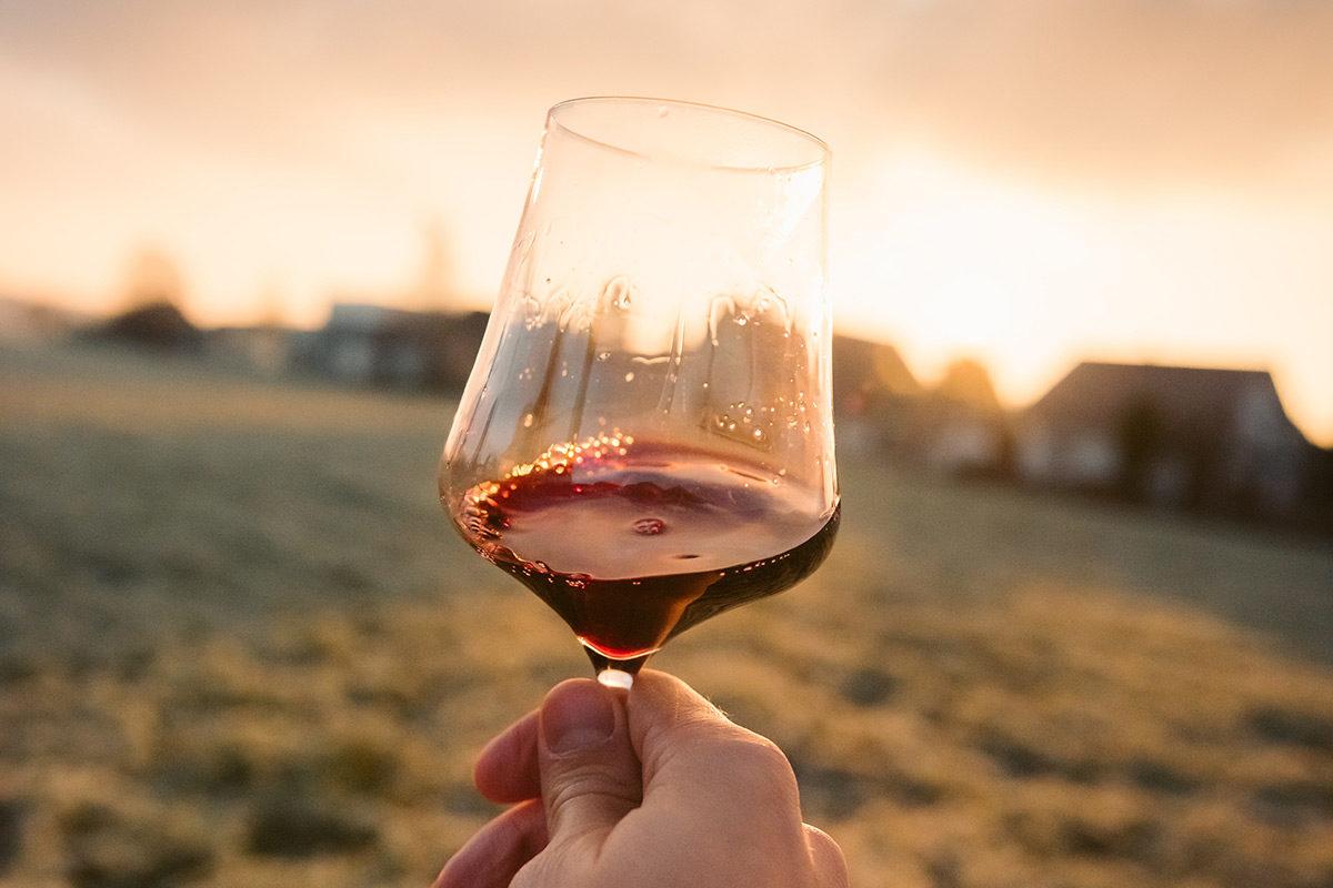 Visit Ascoli e i vini del piceno