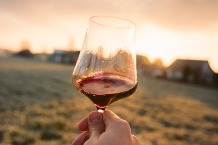 Visit Ascoli vini del Piceno