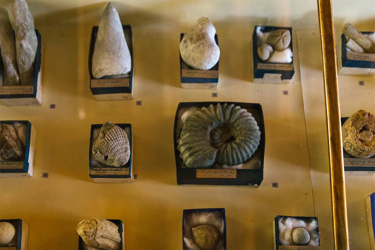 Visitare Ascoli Piceno in modo inedito: gli itinerari orsiniani